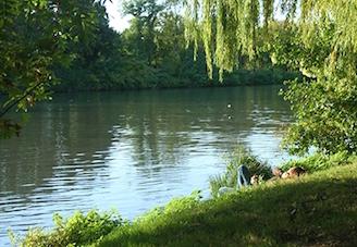 Les berges de Seine